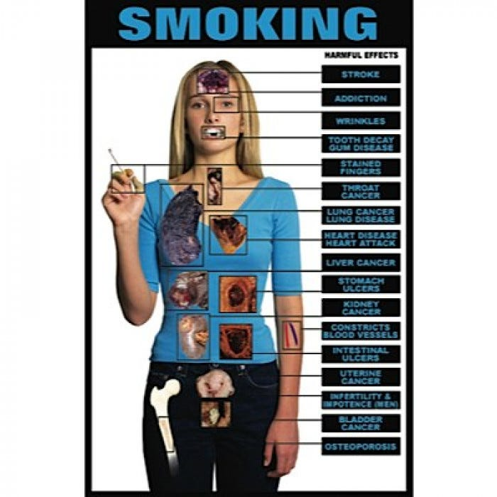 harmful effects of smoking research paper And research which would prove that cigarette smoke had negative effects on people's health indeed, in a study by diethelm and mckee (2006, p 10-18), the authors demonstrated that the habit of creating such symposiums could be traced back to 1972.