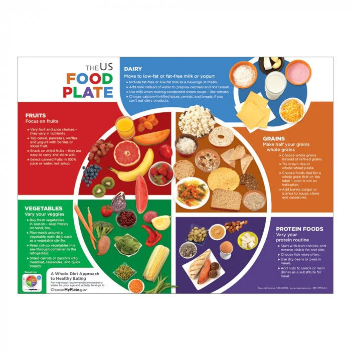 US Food Plate Handouts - Nutrition - Educational Posters